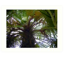 Under a Palm Tree Art Print