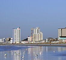Coastal Architecture by Ree  Reid