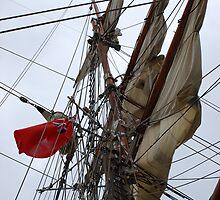 Tall Ship Europa's mast by Paula  by Ciara(Kevin & Paula) Neupert