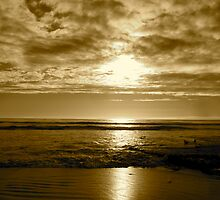 """""""Basking In Sepia Too"""" by Tim&Paria Sauls"""