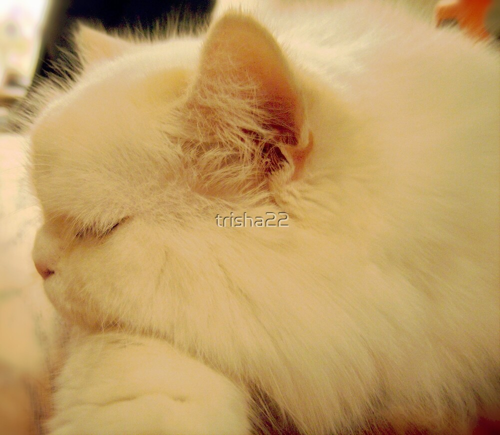 SLEEPING BEAUTY by trisha22