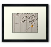Pear X2 Framed Print
