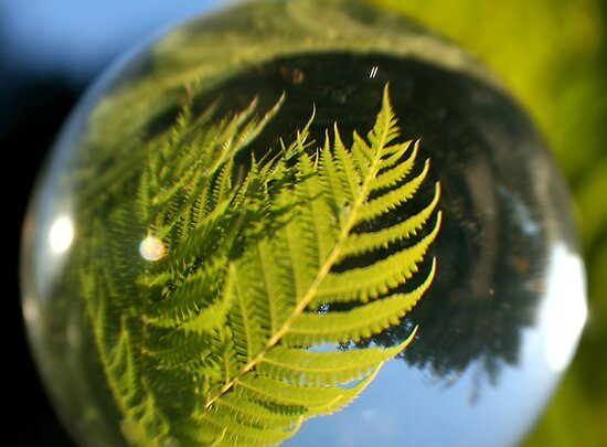 The Future is a Bright Green Tree Fern by Bryan Freeman