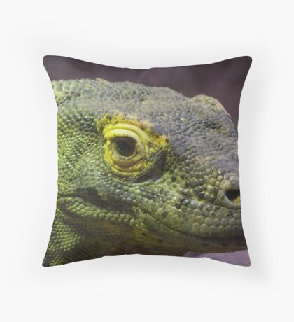 Here be Dragons Throw Pillow