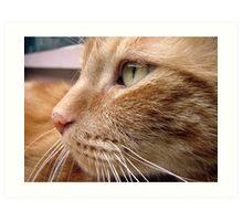Tigger's Perfect Profile Art Print