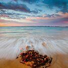 Queenscliff Dawn by Neil