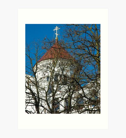 """Temples - """"The Cathedral of the Theotokos in Vilnius (LT)"""" Art Print"""