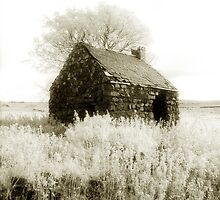 The Hovel by ragman