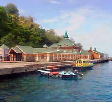 Martinique,customs house on beach by Jerry Clitty