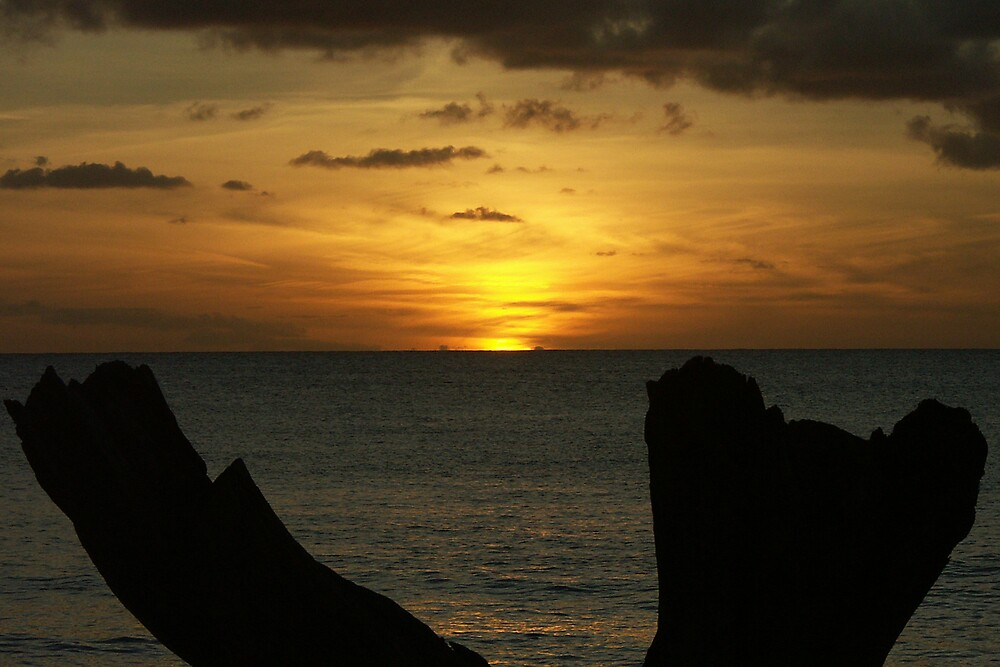 sunset over barbados by mark connell