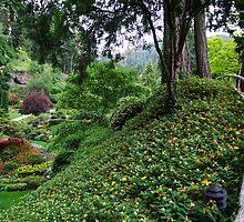 Sunken Garden No.4 by George Cousins