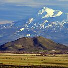 Mt. Shasta by Randy Richards