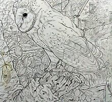 Owl and home. by Robert David Gellion