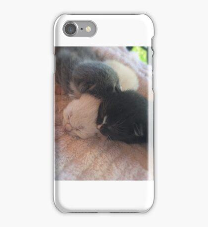 A Trio of Kittens iPhone Case/Skin