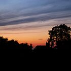 Silhouetted Sunset by Photodx
