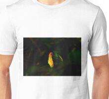 Toucan of Iguazu Unisex T-Shirt
