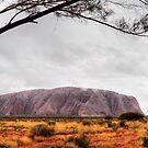 Rain over Uluru by Steven Pearce