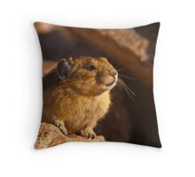 How To NOT Get An Image of a Pika Squeaking Throw Pillow