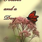 Forever and a Day by RockyWalley