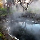 Hot Steam Rotorua Park New Zealand by sandysartstudio