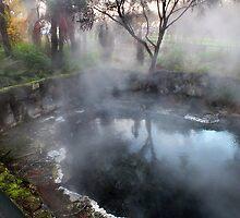 Hot Steam Rotorua Park New Zealand by Sandra  Sengstock-Miller