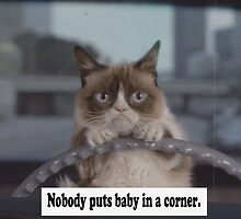 Nobody Puts Baby in a Corner Cat by Charlottesw3b