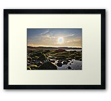 Can Gorillapads Fly? Framed Print
