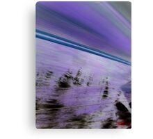 Zoom! Canvas Print