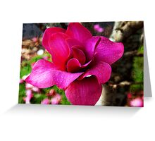 Magnolia in Full Blossom Greeting Card
