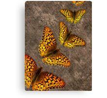 Texture Transition Boundary Canvas Print