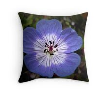 Shining Out! Throw Pillow