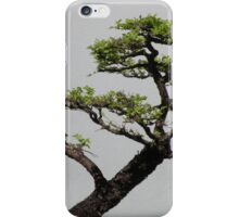 The Beauty of Bonsai iPhone Case/Skin