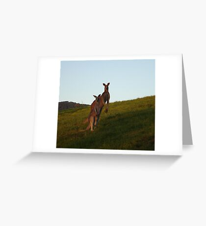 Roo Family Greeting Card