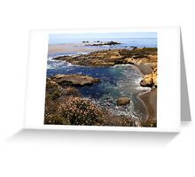 Sea Lion Point, Point Lobos State National Reserve Greeting Card