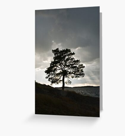 Silhouette Greeting Card
