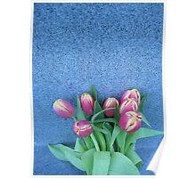 Tulips in Tungsten (1) Poster