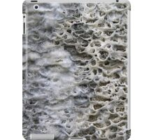 Another world iPad Case/Skin