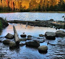 Sprague Lake by Jen Millard