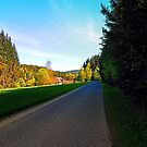 Country road on a spring afternoon   landscape photography by Patrick Jobst