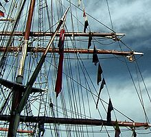 Tall Ships & silver birds (3) by SNAPPYDAVE