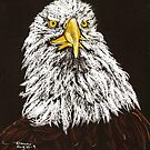 Bald Eagle by Dawn B Davies-McIninch