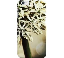 springtime beauty iPhone Case/Skin