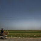 Nesting Instinct - The Road to Hamadan - Iran by Bryan Freeman
