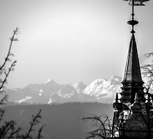 The Swiss Alps And A Zurich Church Spire by Ian Mooney