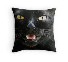 cat the 2nd Throw Pillow
