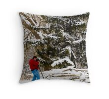 A Photographers Winter Dream Throw Pillow