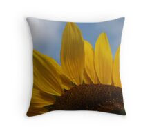 The sun is shining Throw Pillow