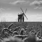 Corn & Chesterton Windmill  by Mark Mitrofaniuk