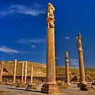 Palace Columns - Persepolis - Iran by Bryan Freeman