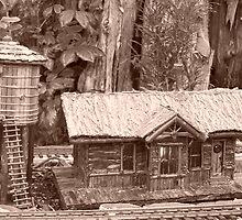 Railway house by Mardra